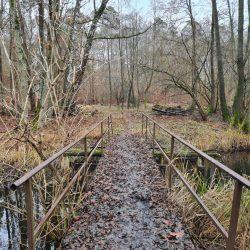 Schmale Eisenbruecke im Ruppiner Land an einem Wintertag