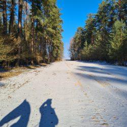 Schneedbedeckter, breiter Sandweg im Wald unter blauem Himmel
