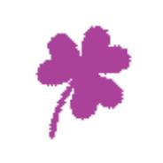 Symbol Kleeblatt in pink für Trainingsglück